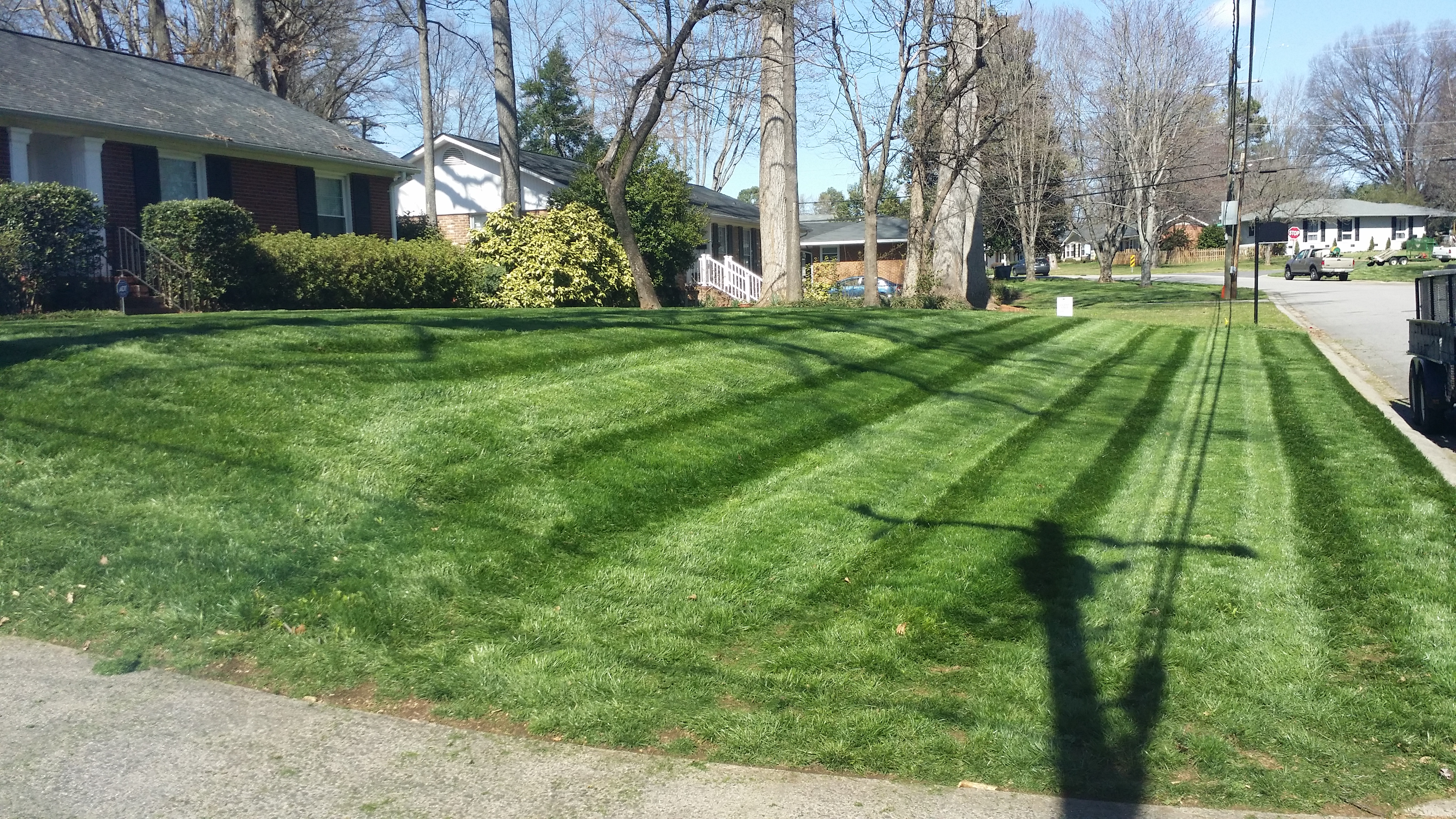 Turn Heads With a Thriving Lawn